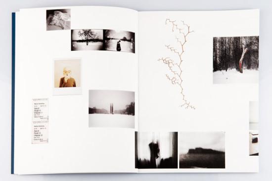 Sztuka fotografii – Sztuka przetrwania
